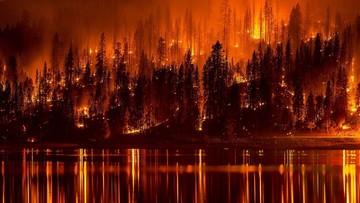 100 tys. ofiar dymu z pożarów w Indonezji