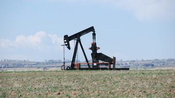 13-10-2016 08:07 Cena baryłki ropy znów poniżej 50 dolarów