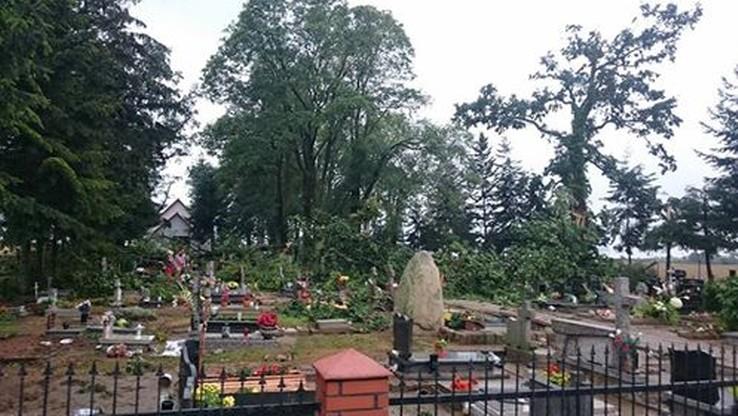 Powalone drzewa na cmentarzu