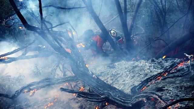 USA: mimo wysiłków strażaków pożary w Kalifornii nie ustępują