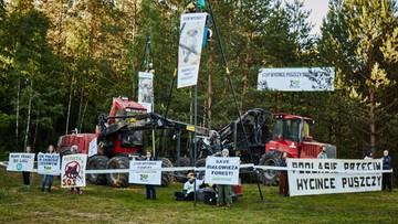 08-06-2017 13:53 Policja siłą odciągała obrońców drzew w Puszczy Białowieskiej. Przykuli się do maszyn, aby zablokować wycinkę