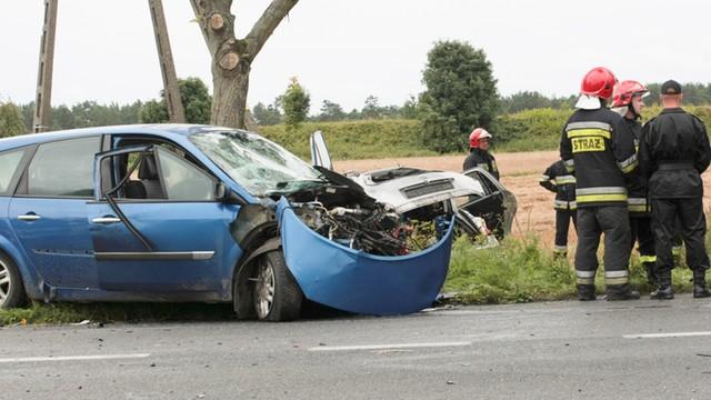 Policja: 30 ofiar wypadków drogowych podczas długiego weekendu