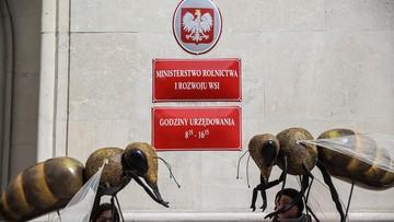 60 tys. podpisów pod petycją Greenpeace i pszczelarzy. Chcą zakazu stosowania pestycydów