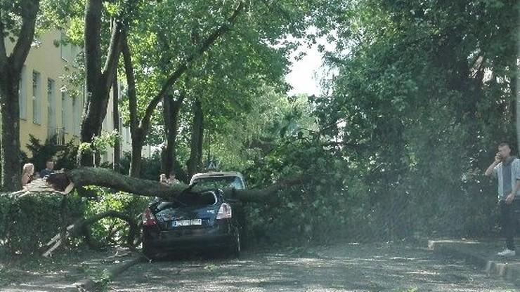 2017-06-29 Lublin, ul. Zuchów. Burza przewróciła drzewo na samochód