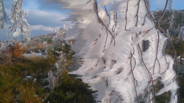 Kto wybrał się na wycieczkę w okolice Hali Radziechowskiej w Beskidzie Śląskim, mógł oglądać takie widoki