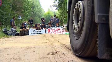 """09-11-2017 12:56 """"Wycinka świerków jest nieuzasadniona"""". Naukowcy o ochronie Puszczy Białowieskiej"""