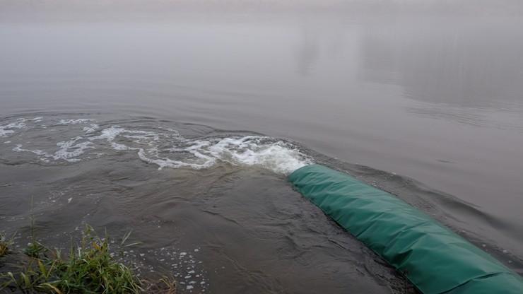 Około miliona ryb trafiło do Warty