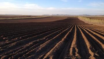 21-02-2017 13:59 Ziemia rolna przestała drożeć