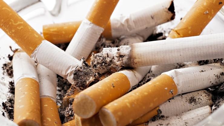 53 Ukraińców oskarżonych o nielegalna produkcję papierosów