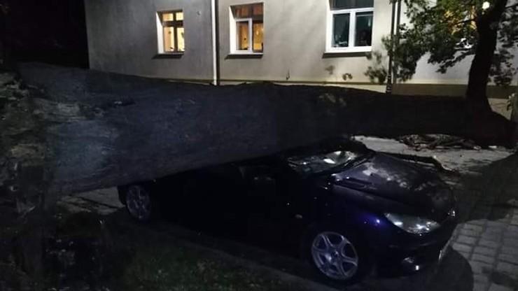 Drzewo przygniotło samochód. Wichury na Dolnym Śląsku