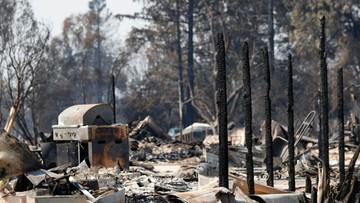 17-10-2017 05:49 Pożary w Kalifornii. Los stu osób pozostaje nieznany