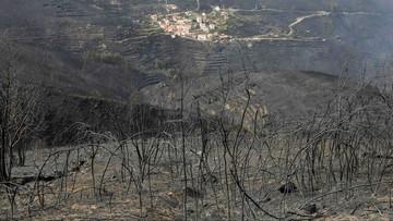 16-10-2017 22:59 Pożary lasów w Portugalii. Rząd ogłosił trzydniową żałobę narodową