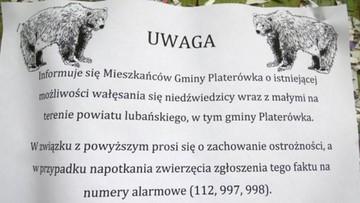 14-06-2016 10:33 Ostrzeżenie przed niedźwiedziami w Karkonoszach. Poprzednio widziano je 200 lat temu