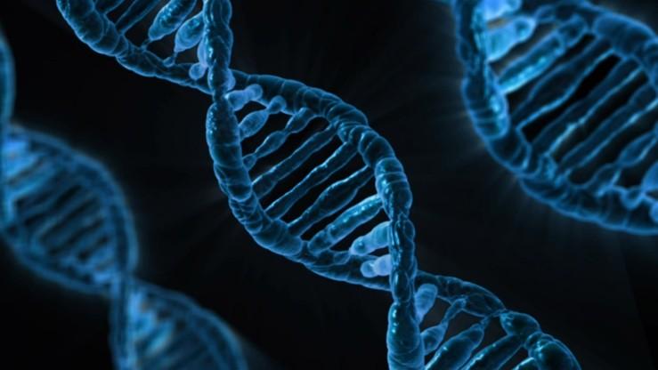Niecodzienna kradzież na Sardynii. Łupem złodziei padły... próbki DNA