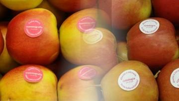 2016-10-21 Białystok: naklejki na jabłkach przypominają o profilaktyce raka