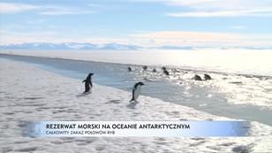 Rezerwat morski na Oceanie Arktycznym - całkowity zakaz połowu ryb