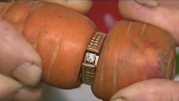 17-08-2017 12:38 Zgubiony pierścionek zaręczynowy po 13 latach odnalazł się w... marchewce