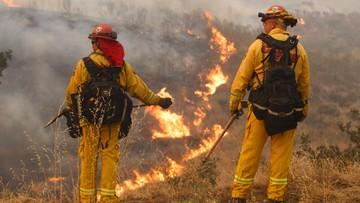 25-07-2016 11:15 Prawie dwa tysiące strażaków walczy z pożarami lasów w Kalifornii