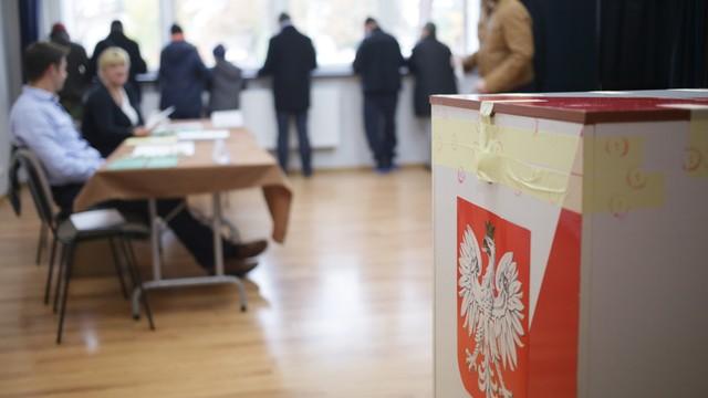PO chce mieć własny komitet ochrony wyborów na wybory samorządowe