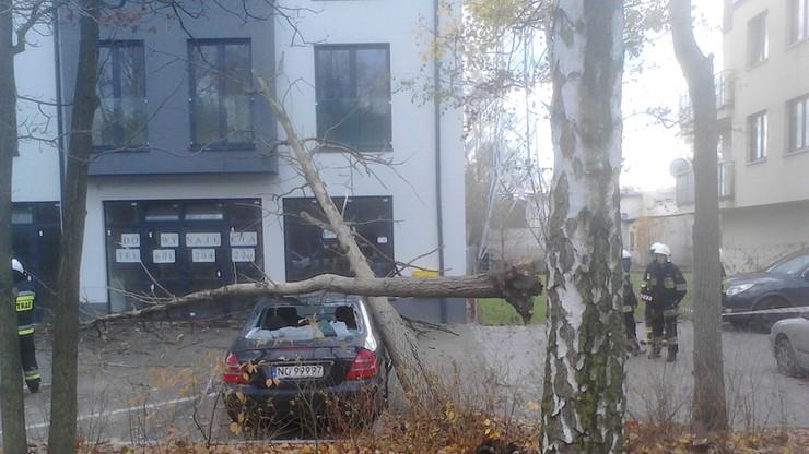 Drzewo spadło na samochód w Warszawie