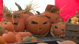 Halloween tuż tuż