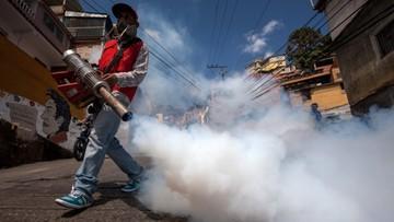 29-01-2016 11:50 Już 5 przypadków wirusa Zika w Niemczech
