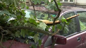 Połamane drzewa, zalane ulice. Nawałnica przeszła nad Krakowem