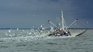 Kolejne osoby zatrzymane ws. korupcji inspektorów rybołówstwa