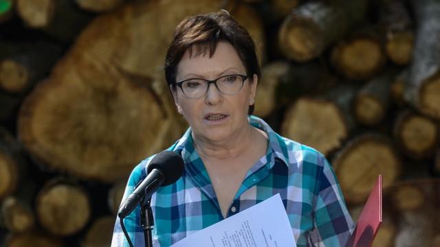 Kopacz: zapiszemy w ustawie, że Lasy Państwowe nie będą prywatyzowane