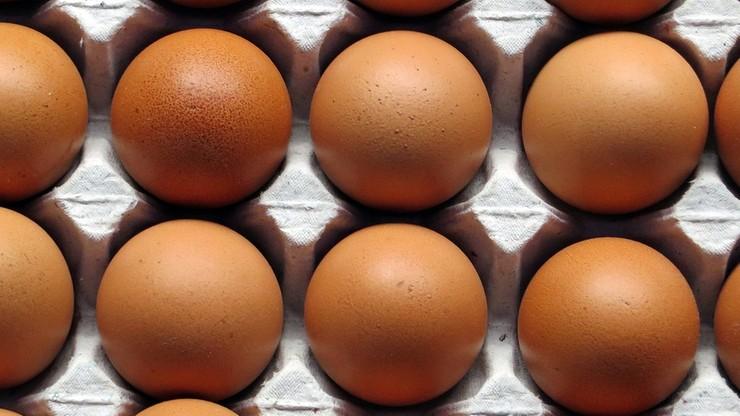 Zarządzono kontrole ferm jaj i drobiu w Holandii po informacjach o skażeniu środkiem owadobójczym