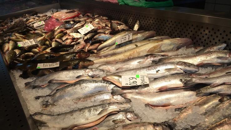 """Łosoś """"z zażółceniami i o tranowatym smaku"""", """"mazisty"""" mintaj. UOKiK skontrolował handel rybami"""