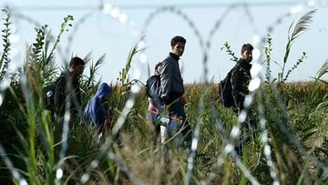 13-05-2017 20:25 Kolejny Tunezyjczyk powiązany ze sprawcą zamachu w Berlinie wydalony z Włoch