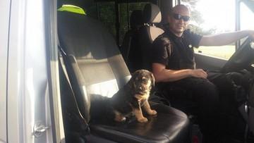13-06-2016 12:47 Policjant uratował maltretowanego szczeniaka i dał mu dom