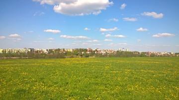 2017-05-14 Wiosna w pełni w Ełku