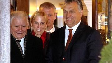 Spotkanie Orban - Kaczyński. W jednej z krakowskich restauracji