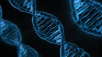 30-01-2017 21:56 W dzieciństwie środowisko, potem geny. Niemieccy naukowcy zbadali co bardziej wpływa na nasze życie