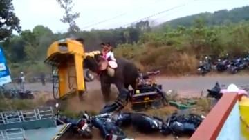 02-03-2016 17:52 Indie: słoń wpadł w amok. Zniszczył 27 pojazdów