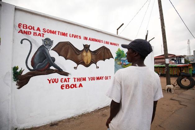 Śmiertelne żniwo eboli