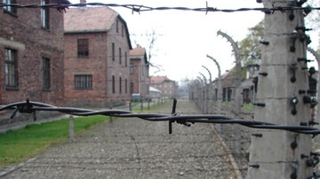 """28-11-2016 10:29 Niemcy: wyrok na """"buchaltera Auschwitz"""" prawomocny"""