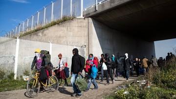 """26-10-2016 15:15 W """"dżungli"""" w Calais nie ma już migrantów"""