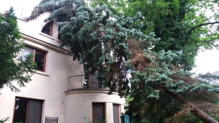 2017-06-30 Po burzy w podwarszawskim Milanówku. Drzewo przewróciło się na dom
