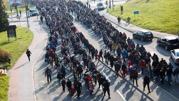 Austria odsyła setki migrantów do Słowenii. Podawali fałszywą narodowość