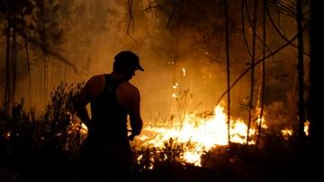 14-08-2017 16:53 Portugalia: pożary lasów w centrum kraju. Sąsiadom pomogła Hiszpania