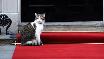 13-07-2016 14:37 Cameron odchodzi, kot Larry zostaje