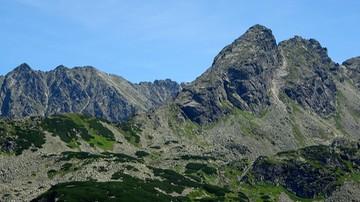 08-04-2016 23:07 Nadzwyczajna sytuacja pod Tatrami z powodu niedźwiedzi