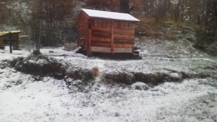 W Pomorskiem spadł pierwszy śnieg