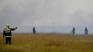 04-08-2017 10:19 Pożar w Parku Narodowym Hortobagy na Węgrzech. Spłonęło 1000 hektarów