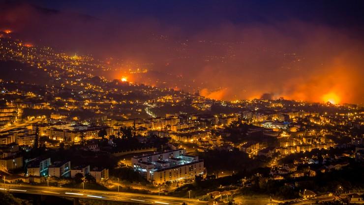 Madera walczy z ogniem. Trzy ofiary pożarów lasów