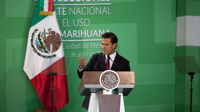Prezydent Meksyku chce legalizacji marihuany