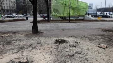 Wycinka drzew w parku Świętokrzyskim. Przygotowano decyzję o jej wstrzymaniu